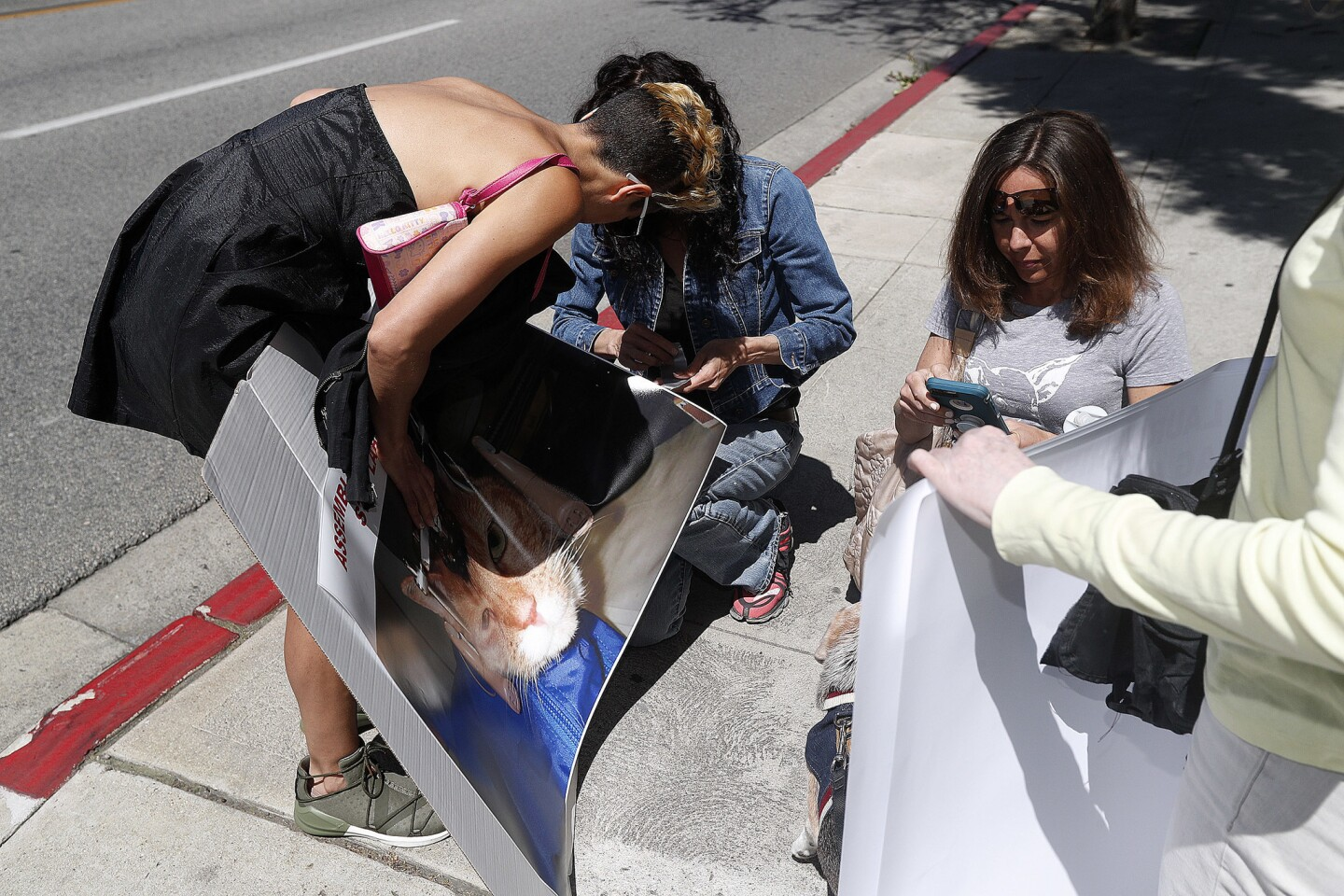 Photo Gallery: Progress for Science protest California Assemblymember Laura Friedman's AB-700 bill