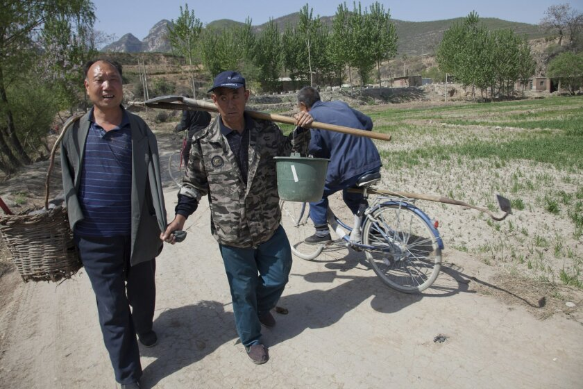 In this April 23, 2015 photo, friends Jia Wenqi, left, and Jia Haixia, right, walk along a lane in Yeli village near Shijiazhuang city in northern China's Hebei province. For the past 13 years, Jia Wenqi, who has no arms, and Jia Haixia, who is blind, have worked together to plant and water more th