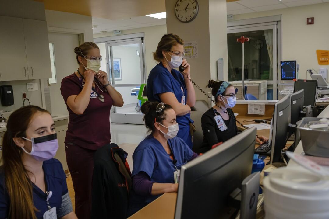 Nurses monitor patients' details