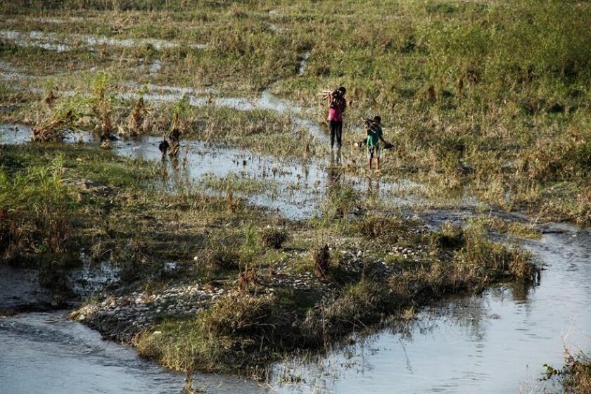 Fotografía de archivo del 24 de noviembre de 2014, que muestra un río con poco afluente, en el Itsmo de Tehuantepec, en el estado de Oaxaca (México). EFE