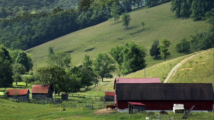 NEWPORT, VIRGINIA--JUNE 11, 2017--A pastoral view from Mountain Lake Road, near the historic town of