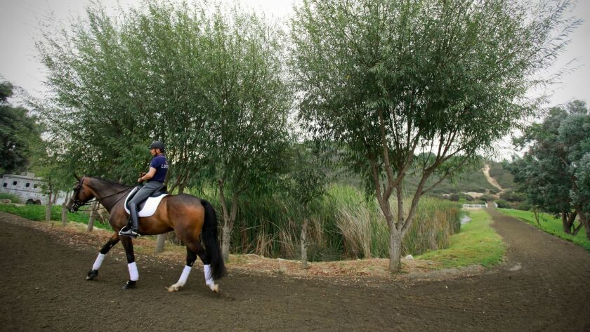 Dressage Team in the London Summer Olympics, Steffen Peters, rides Legolas, a 10-year-old Westfalien, after a practice session at Arroyo Del Mar in Carmel Valley.