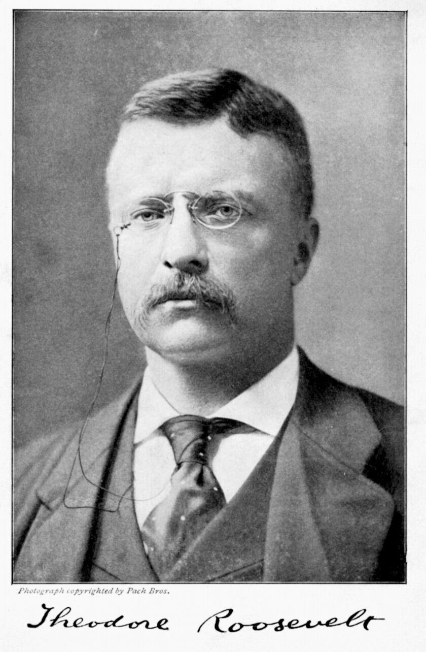 Portrait of American President Theodore Roosevelt