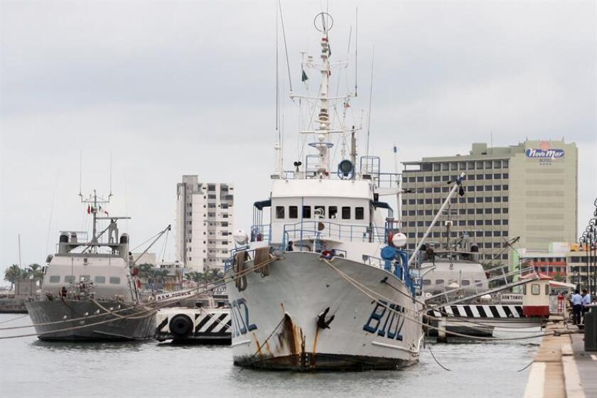 La Asociación Interamericana para la Defensa del Ambiente (AIDA) presentó hoy un escrito en el que advierte de los riesgos ambientales al Sistema Arrecifal Veracruzano (SAV) por la ampliación autorizada del puerto de Veracruz. EFE/ARCHIVO