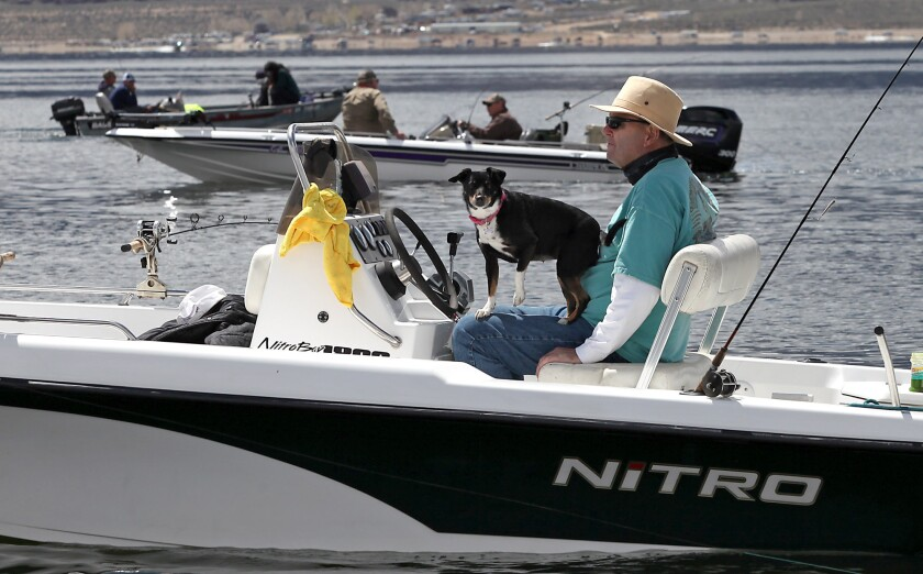 "A dog joins its owner and other boaters for ""Fishmas,"" the High Sierra trout season, on opening day, April 29, 2016, at Crowley Lake."