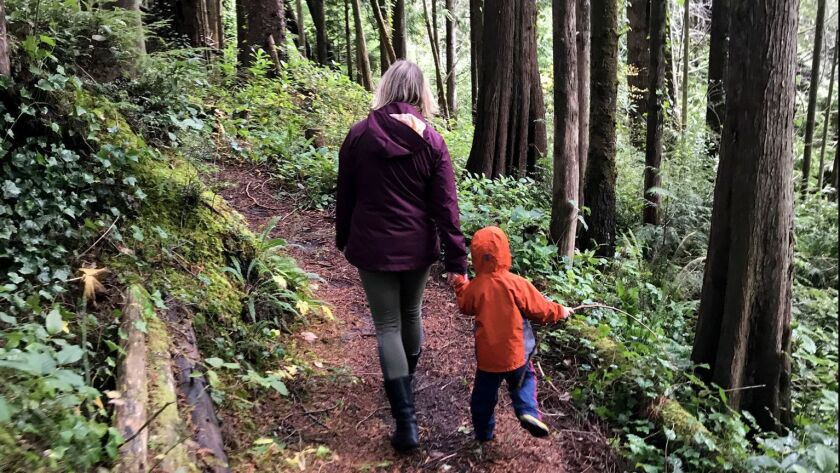 DEPOE BAY OREGON - OREGON - We also got off the highway and discovered this path through a moss-cove