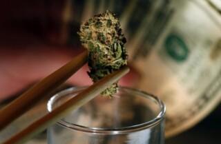La historia de la legalización de la marihuana en EE.UU.