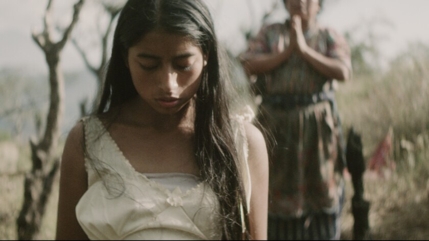The debut feature film from Guatemalan director Jayro Bustamente, 'Ixcanul' tells the coming of age story of María, a Maya teen whose destiny lays squarely in the hands of others.