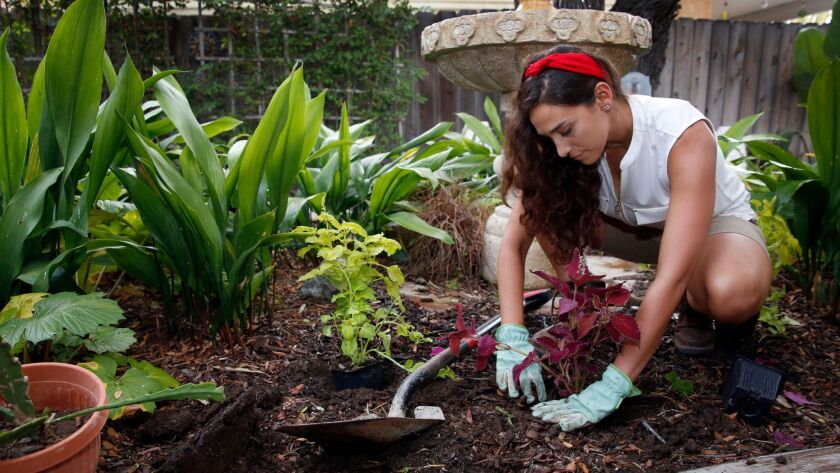 Bendrick works on a section of the garden she created at her parents' home in Del Cerro.