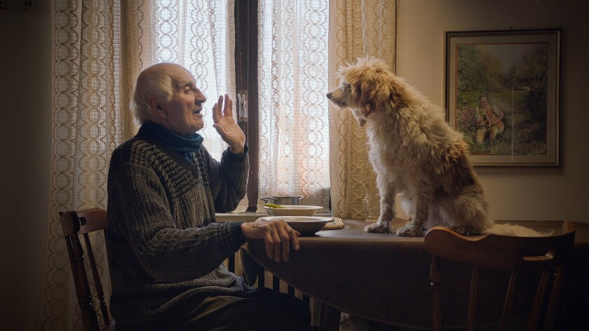 """This image released by Sony Pictures Classics shows Aurelio Conterno and his dog Birba in a scene from """"The Truffle Hunters."""" (Sony Pictures Classics via AP)"""