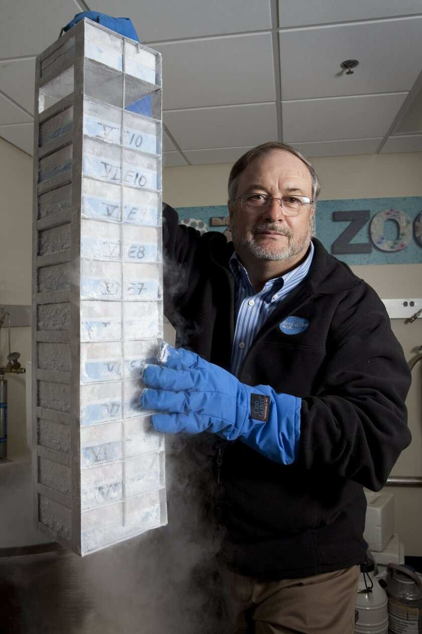 Oliver Ryder, director of genetics at the San Diego Zoo Institute for Conservation Research, with a storage rack containing frozen tissue samples that are part of the zoo's animal genetics library. Ryder is playing a leading role in a global effort to map the DNA of 10,000 animals, including some f