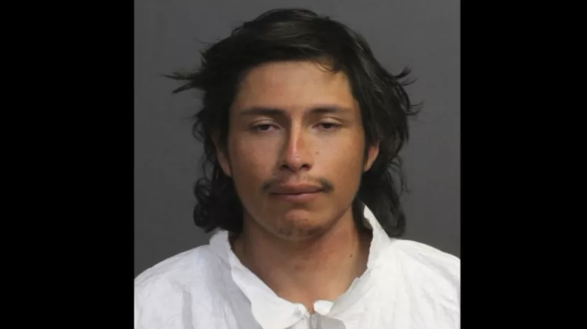 Daniel Correa, 27, pleaded guilty  to second-degree murder in the beating death of 29-year-old Ashley Boulay.
