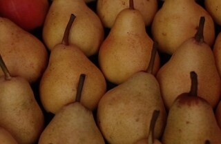 Market Fresh: Pears