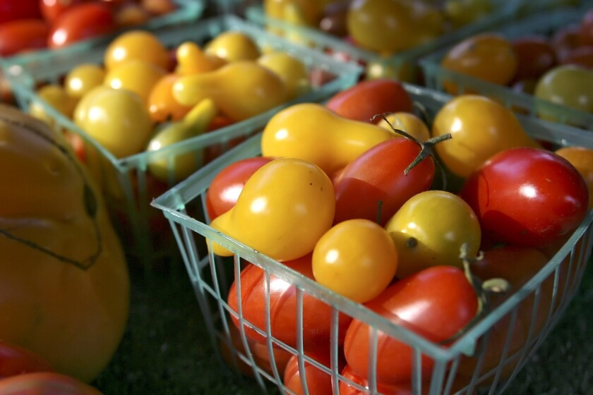 California grows 90% of the tomatoes sold in the United States and it takes 3.3 gallons of water to grow one tomato to maturity, according to statistics compiled by Mother Jones.