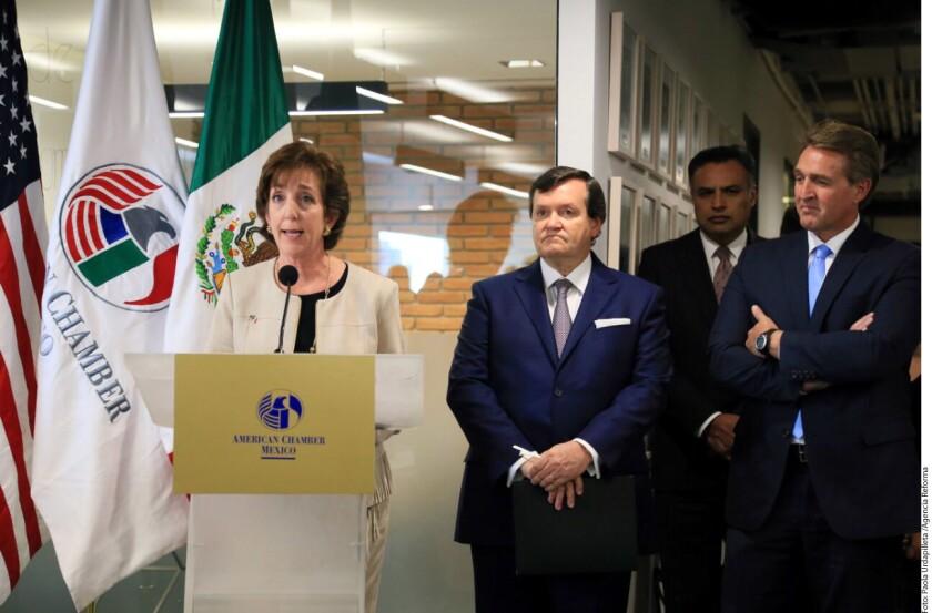 La Secretaria de Relaciones Exteriores, Claudia Ruiz Massieu, y el Presidente de la Cámara Baja de Estados Unidos, el republicano Paul Ryan, sostuvieron este miércoles una reunión aquí en el Capitolio donde abordaron el Tratado de Libre Comercio de América Del Norte (TLC).