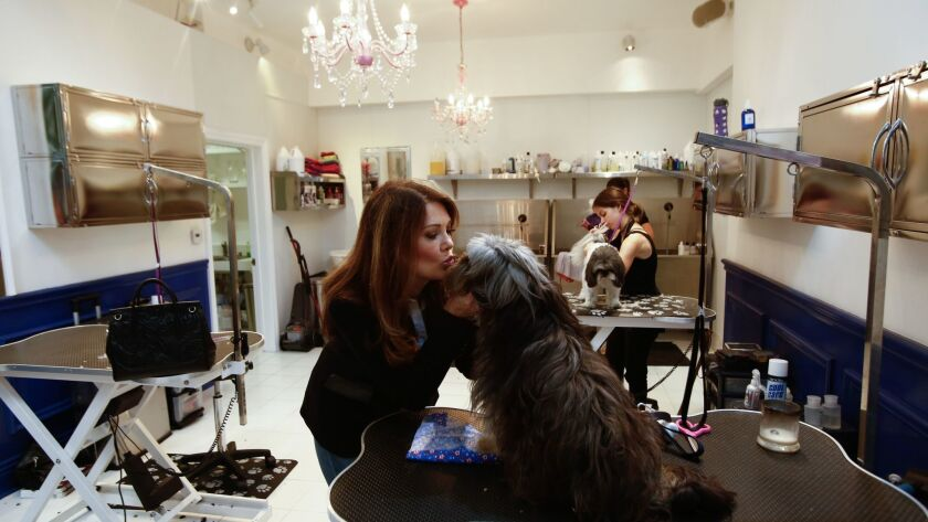 LOS ANGELES, CA-July 19, 2017: Lisa Vanderpump kisses Ollie, who was rescued from a slaughterhouse i