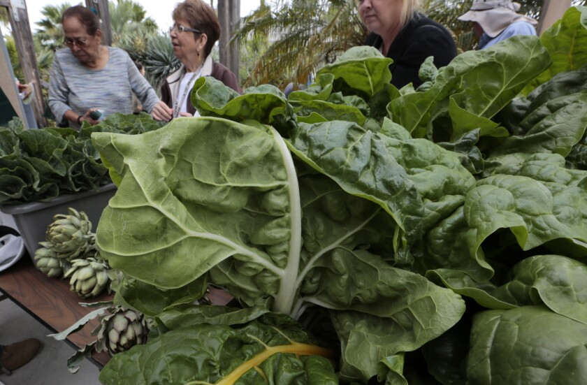 Community garden members sell their vegetable during Earth Day celebrations at the Growing Experience Urban Farm in Long Beach in April. L.A. County supervisors want to encourage more community gardening by establishing tax breaks for property owners who use vacant lots to grow crops.