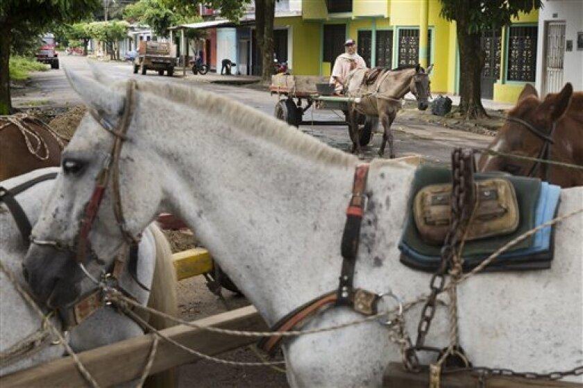"""En esta foto del 21 de septiembre del 2016, un carro tirado por caballos se abre paso por una calle de Puerto Rico, al sur de Colombia. La provincia de Caquetá, donde se encuentra Puerto Rico, ha sido durante mucho tiempo un bastión de las Fuerzas Armadas Revolucionarias de Colombia. El líder rebelde y jefe del equipo negociador de las FARC en el proceso de paz, Luciano Marín o """"Iván Márquez"""", nació en Caquetá."""