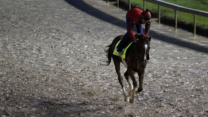 Kentucky Derby entrant Code of Honor is taken for a morning run at Churchill Downs Friday, May 3, 20