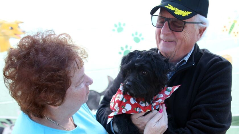 Cheryl and Don Schilling, of Burbank, won a lottery being able to adopt Max an 18-month old Maltipoo