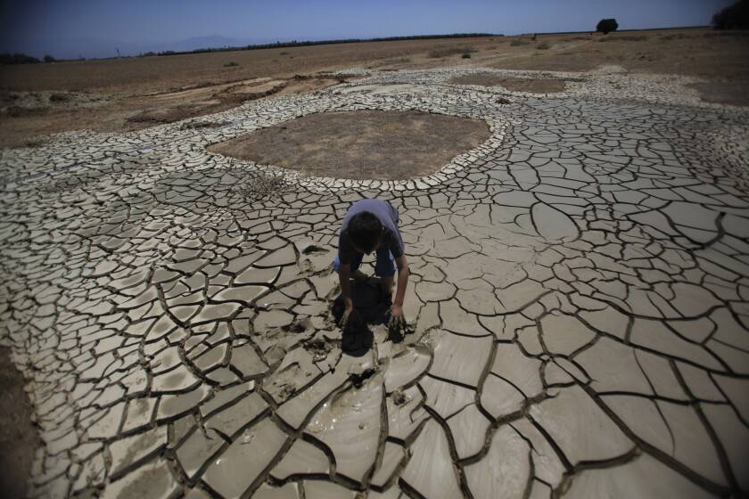 Forecasters say a weak El Niño won't bring enough precipitation to quench California's drought. Here, Brandon Arthur, 10, tries to get out of gooey tailings at father Steve Arthur's water well drill site near Terra Bella, Calif., on July 16, 2014.