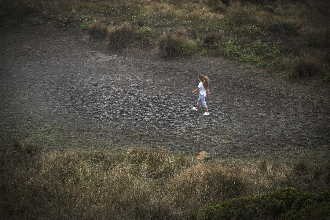 Fleur Dawes walks on a dried pond in Tule Elk Reserve in Point Reyes National Seashore.