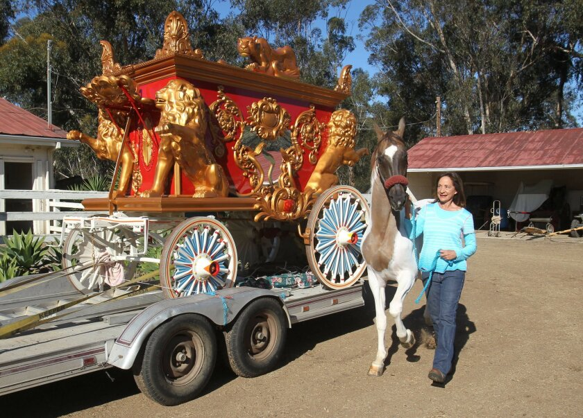 "Michele Macfarlane led 22 year-old ""Thunder"" past the elaborate calliope he will help to pull in the Rose Parade on Monday. Thunder has appeared 12 times in the Rose Parade."