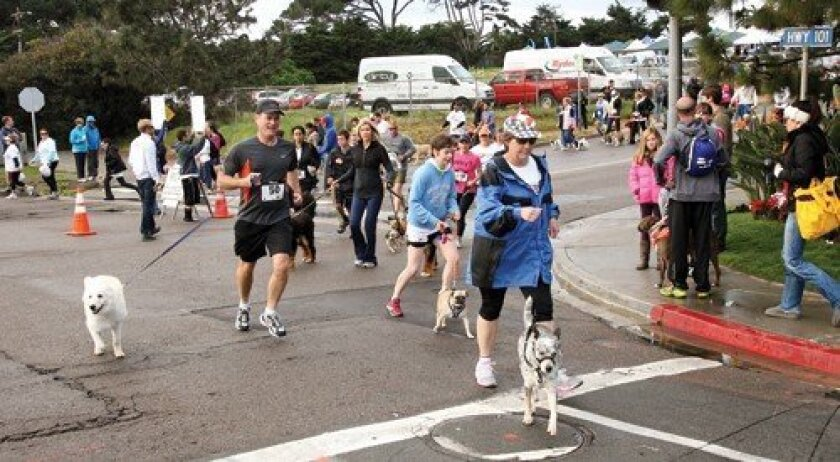 The third annual Puppy Love 5K run and 1-mile walk (Photo: Jon Clark)