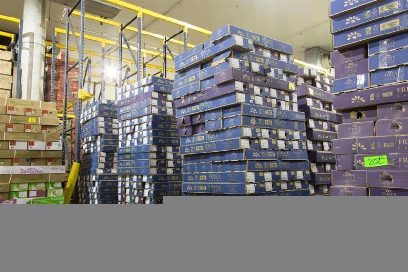 """Miles de cajas de flores se acumulan en el puerto de Miami, Florida, donde se toman muestras por parte de los especialistas en agricultura del Servicio de Aduanas y Protección de las Fronteras (CBP), con el fin de """"interceptar cualquier tipo de plaga o enfermedad antes de que llegue a los hogares y a los seres queridos"""". EFE/CBP/ Immanuel Albrecht/SÓLO USO EDITORIAL/NO VENTAS"""