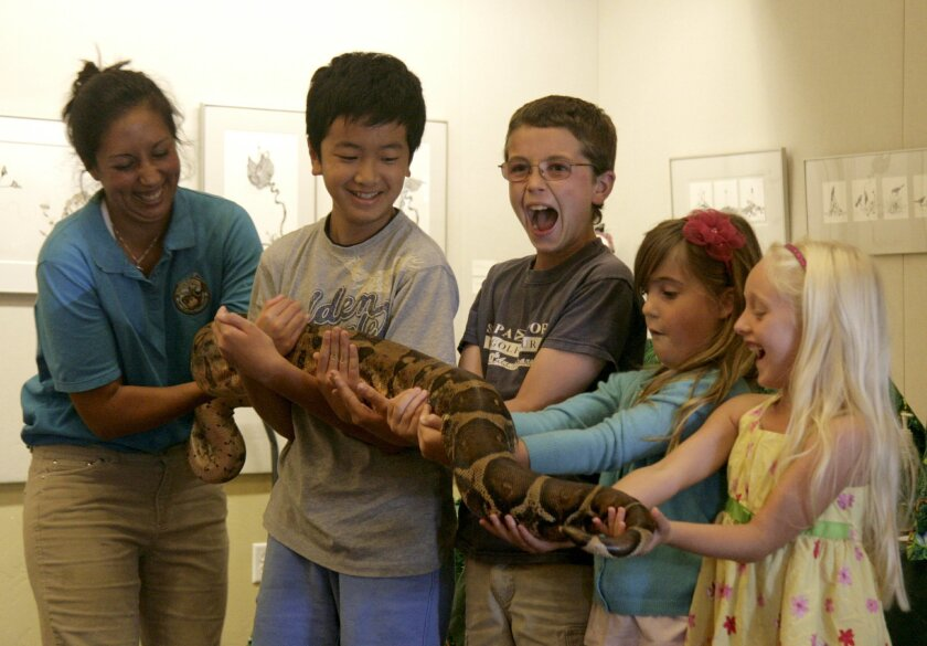 Aaron Liu, William Hartford, Katherine Woodward, and Julia Varon are in disbelief of the python they are holding. Photos Patricia B. Dwyer