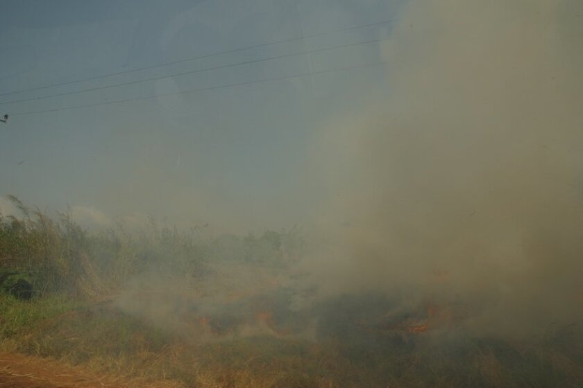 Crews are clearing brush to reduce fire danger in La Jolla.