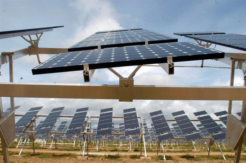 Vista de una planta fotovoltaica. EFE/Archivo