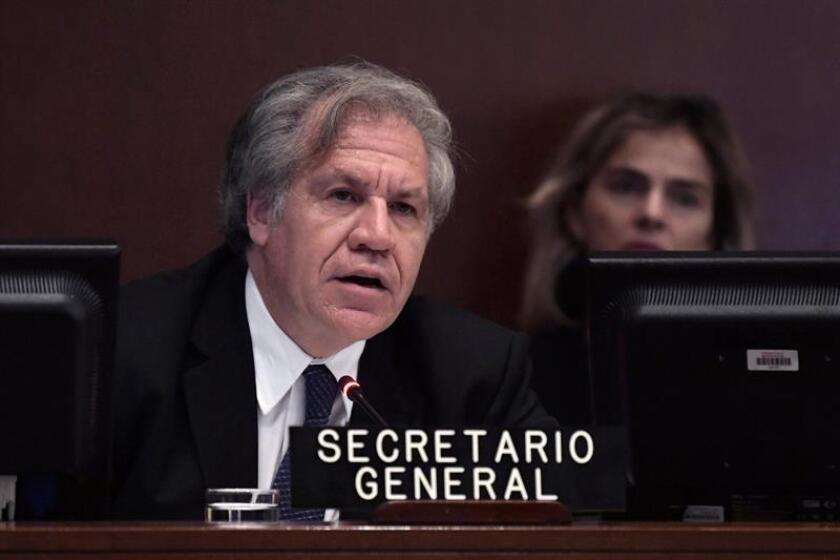 """La Organización de Estados Americanos (OEA) convocó hoy para el miércoles, 5 de septiembre, una sesión extraordinaria de su Consejo Permanente para abordar la """"crisis migratoria originada por la situación en la República Bolivariana de Venezuela"""", según consta en la convocatoria. EFE/Archivo"""