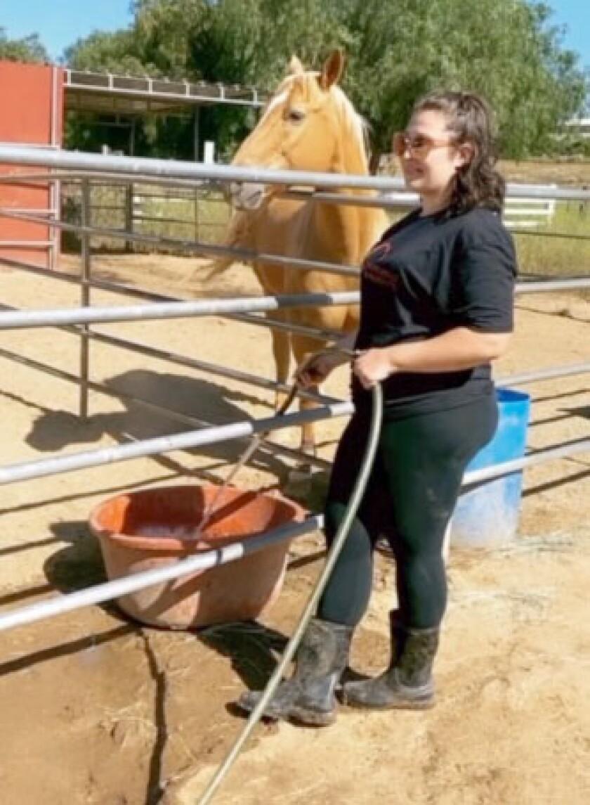 Rescue volunteer Ashley Vaughn makes sure Harley the rescue horse has plenty of water.