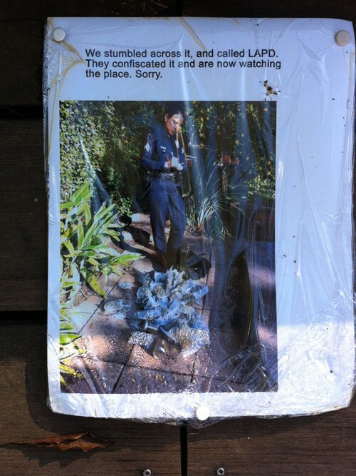 Man finds $175,000 in pot in backyard, then things get weird