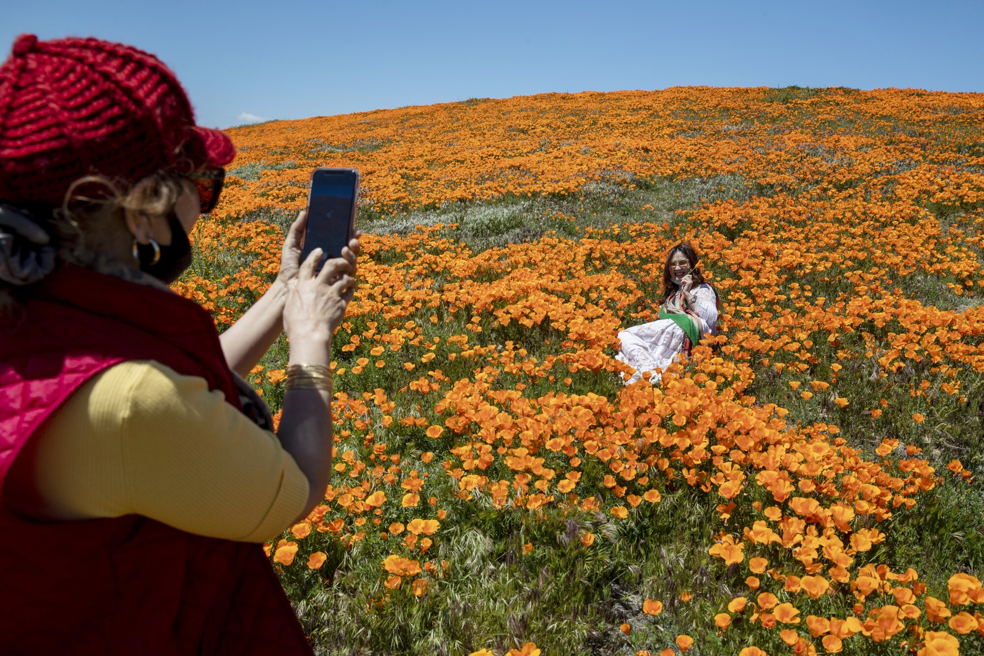Shana Zhao, left, photographs her sister, Vivi Zhao, among blooming California poppies in a field in Lancaster.