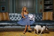 Hot Property | My Favorite Room: Paris Hilton is the central character in her screening room