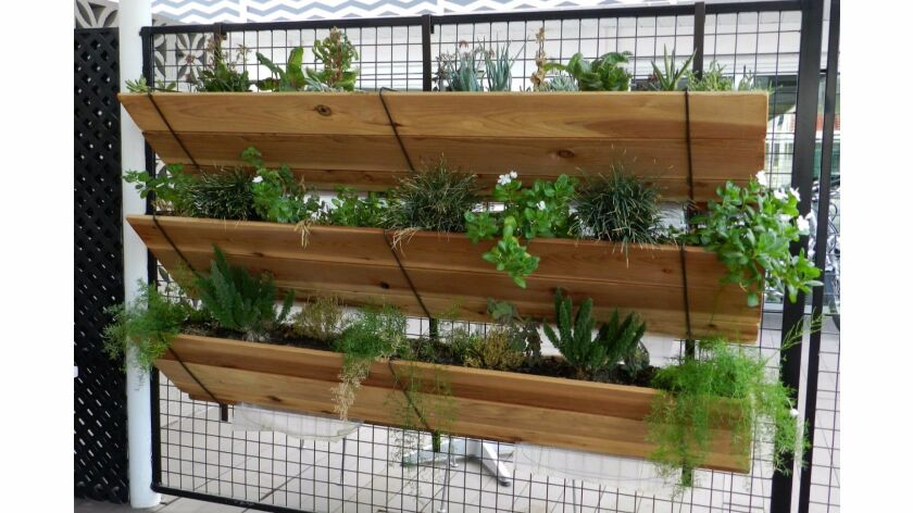 Vertical gardening: 11 ways to get your vegetables to grow up
