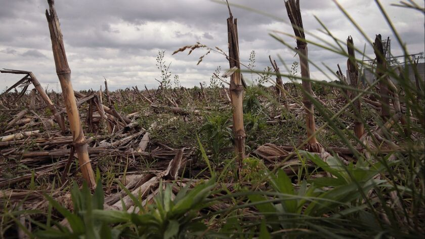Midwest Flooding Threatens Planting Season For Many Farmers