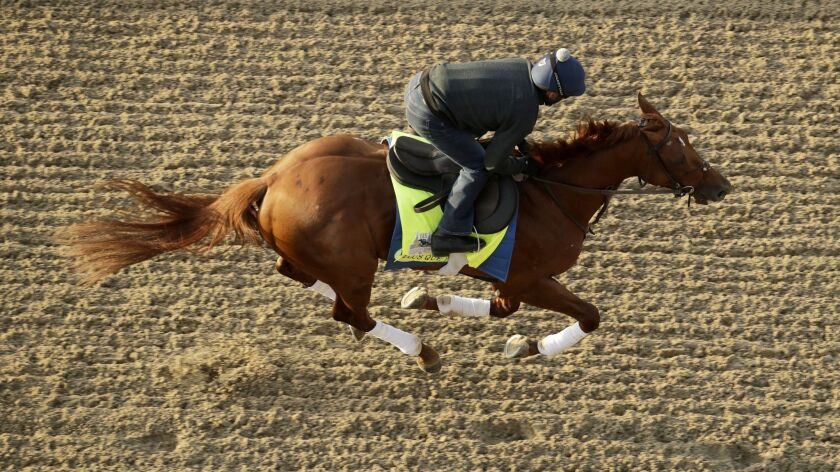 Kentucky Derby hopeful Plus Que Parfait is ridden during a workout at Churchill Downs Monday, April