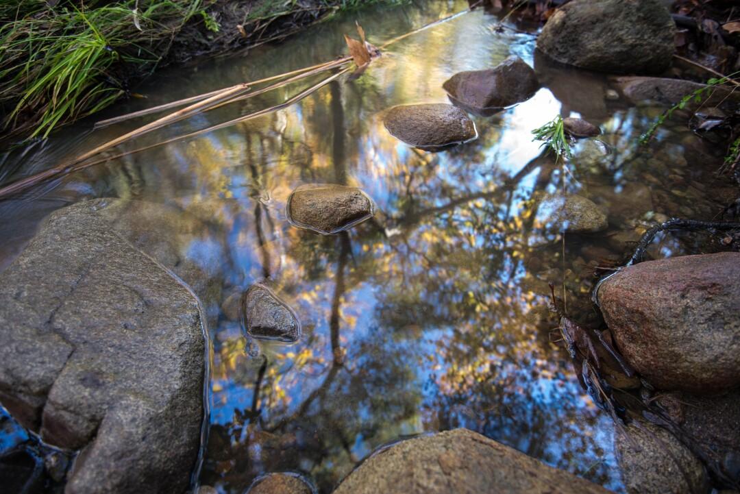 Escondido Creek.jpg