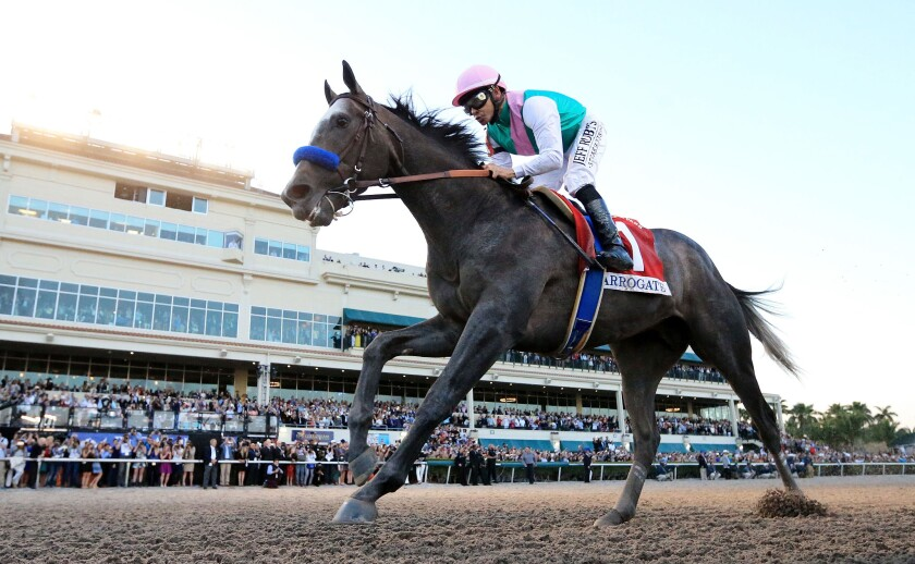 Arrogate wins the $12 million Pegasus World Cup Invitational in 2017.