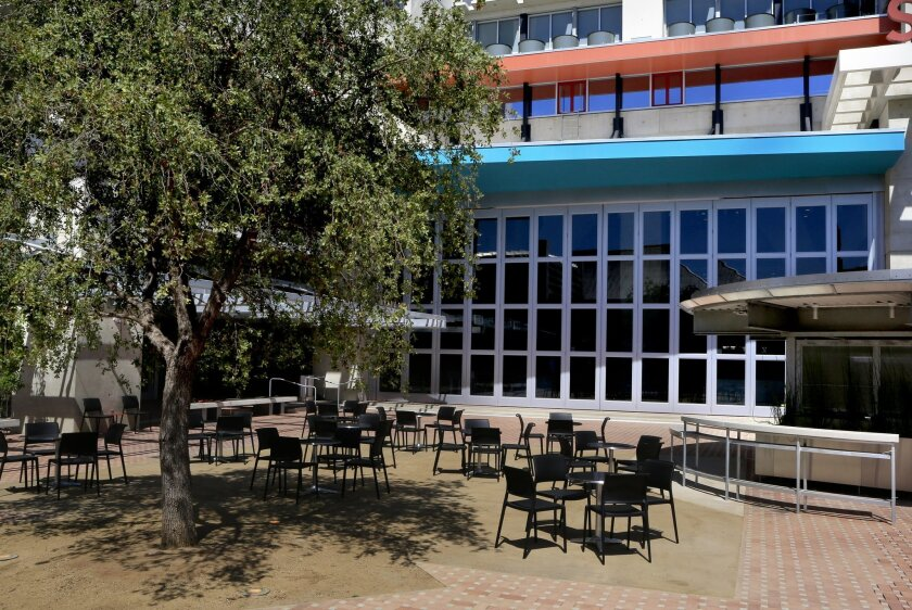 courtyard-tree-gregg