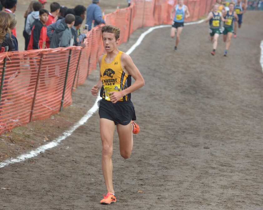 Nico Young of Newbury Park is the national record holder and will run in Saturday's Division 1 cross-country finals in Riverside.