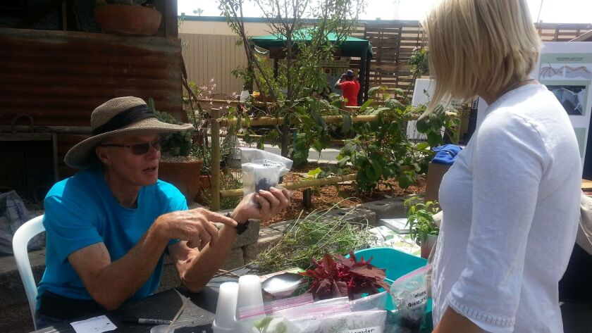 Master Gardener Larry Mummey staffs a propagation station at the Master Gardener Demonstration Day at the San Diego County Fair.