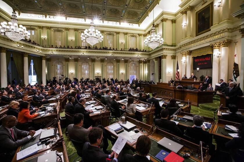 Lobbying to intensify as committees begin considering bills