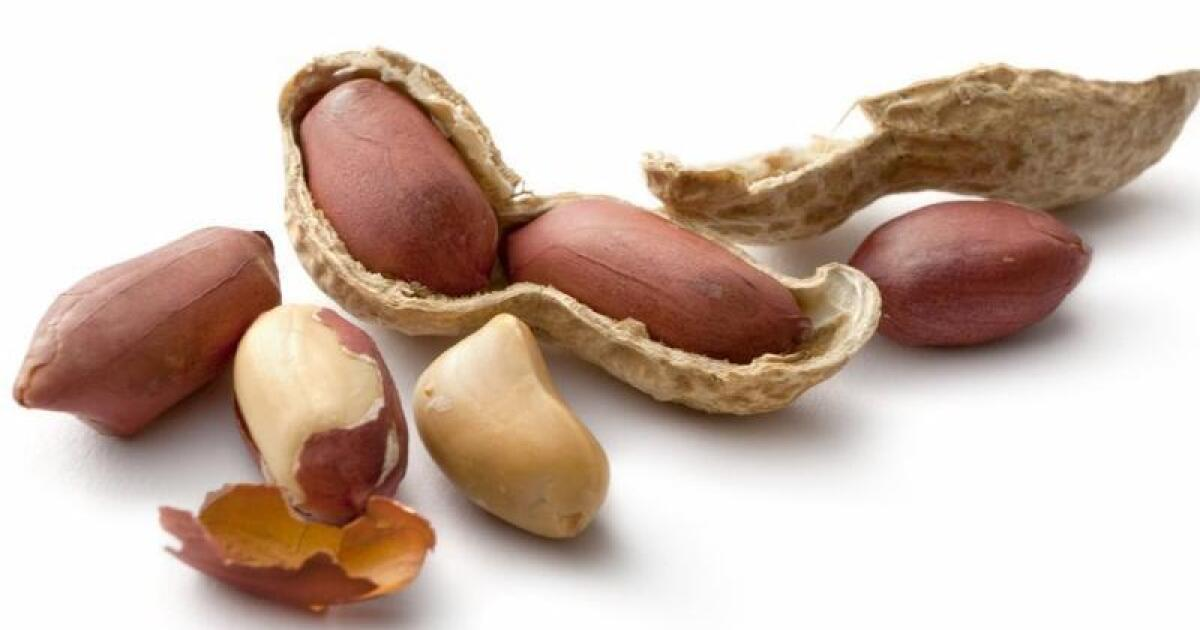 Dry Roasting Process May Turn Harmless Peanuts Into Allergy Nightmares Los Angeles Times