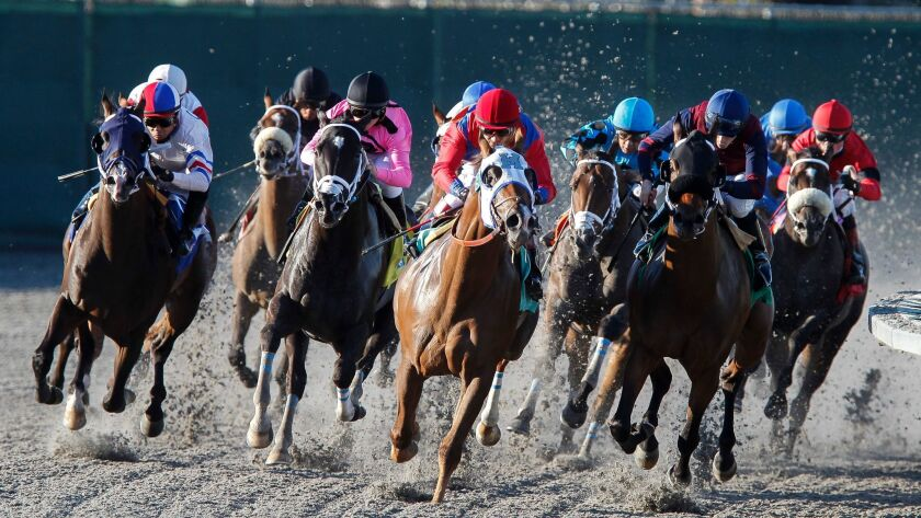 July 17, 2014, Del Mar_| Horses in the 9th race round the turn on Opening Day at the Del Mar Race Tr