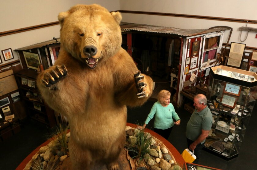 "Curator Margorie Deskovick and Board member David Stepp talk under ""Norman the Bear"" an 8 foot high stuffed grizzly bear which is the center piece  Valley Center History Museum.  -2013 file photo"