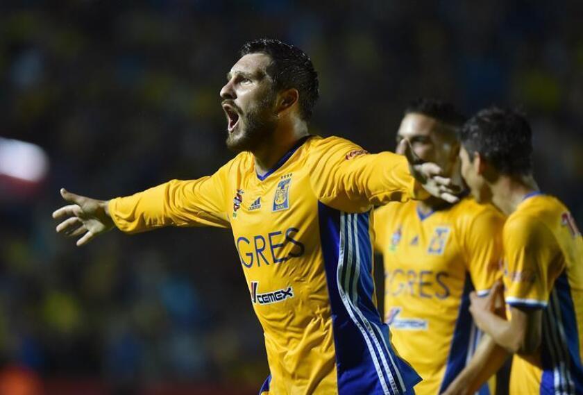 Andre Gignac de Tigres festeja una anotación ante Pumas. EFE/Archivo